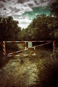 do-not-trespass-1425846-m
